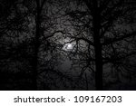 silhouette of trees with winter ... | Shutterstock . vector #109167203