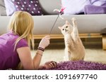 Stock photo girl playing with her cat 1091697740