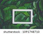 creative frame made of leaves... | Shutterstock . vector #1091748710