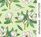 seamless pattern with magnolia... | Shutterstock .eps vector #1091775230