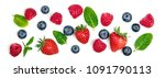 Various Fresh Forest Berries...