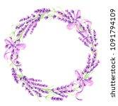 lavender flowers decorative... | Shutterstock .eps vector #1091794109