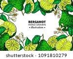 bergamot vector drawing frame.... | Shutterstock .eps vector #1091810279