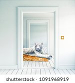 white tiger on the orange... | Shutterstock . vector #1091968919