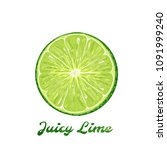 an isolated lime slice  vector... | Shutterstock .eps vector #1091999240