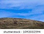natural background. blue sky... | Shutterstock . vector #1092032594