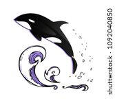 jumping killer whale. vector... | Shutterstock .eps vector #1092040850