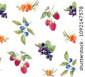 watercolor berry pattern ... | Shutterstock . vector #1092147578