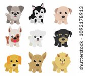 dog breeds collection   Shutterstock .eps vector #1092178913