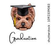 yorkshire terrier graduate.... | Shutterstock .eps vector #1092339083