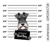 schnauzer dog prison. bad boy.... | Shutterstock .eps vector #1092351728