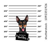 russian toy terrier criminal.... | Shutterstock .eps vector #1092351926