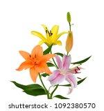 beautiful lily flower bouquet... | Shutterstock . vector #1092380570