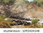 huge herds of herbivores cross... | Shutterstock . vector #1092424148