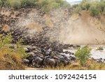 great migration in africa. huge ... | Shutterstock . vector #1092424154