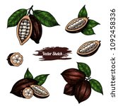 vector cocoa hand drawn sketch .... | Shutterstock .eps vector #1092458336