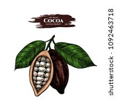 vector background with cocoa .... | Shutterstock .eps vector #1092463718