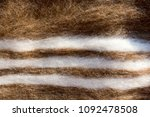 soft hairy woolen textile as... | Shutterstock . vector #1092478508