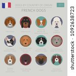 dogs by country of origin.... | Shutterstock .eps vector #1092638723