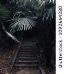 dark stairs leading through... | Shutterstock . vector #1092664280