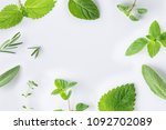 collection of fresh herbal sage ... | Shutterstock . vector #1092702089
