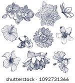 tropical flower set  hand... | Shutterstock .eps vector #1092731366