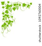 vine green grapes leaves... | Shutterstock .eps vector #1092760004