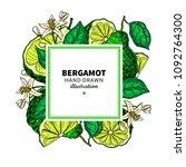 bergamot vector drawing frame.... | Shutterstock .eps vector #1092764300
