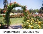 Stock photo rose garden flower arch 1092821759