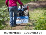 Small photo of Woman worker driving BCS 853 13 HP rototiller is a popular tractor unit preparing soil on outdoor garden