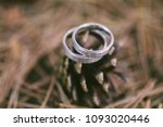 wedding rings in forest  with... | Shutterstock . vector #1093020446