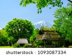 fresh green  japanese thatched... | Shutterstock . vector #1093087334
