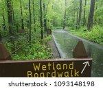 Wetland Boardwalk Sign And Wet...