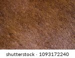 fur skins of horses background | Shutterstock . vector #1093172240
