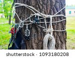 hiking in the forest climbing... | Shutterstock . vector #1093180208