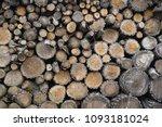 firewood hardwood logs for... | Shutterstock . vector #1093181024
