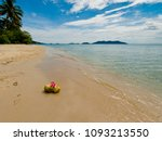 two coconut on the sandy beach. | Shutterstock . vector #1093213550