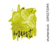 mint concept design. hand drawn ... | Shutterstock .eps vector #1093273394