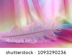 beautiful delicate pink feather ...   Shutterstock . vector #1093290236