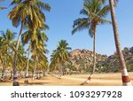 a beautiful palm grove or... | Shutterstock . vector #1093297928