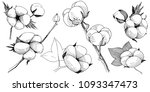 cotton flower in a vector style ... | Shutterstock .eps vector #1093347473