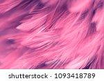 image nature art of wings bird... | Shutterstock . vector #1093418789