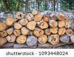 a huge stack of firewood in the ... | Shutterstock . vector #1093448024