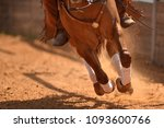 Stock photo the close up view of galloping horse on the arena on the red clay 1093600766