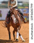 The rider in jeans, cowboy chaps and checkered shirt spinning his reining horse on the red clay an arena. - stock photo
