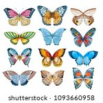 watercolor butterfly set on a... | Shutterstock . vector #1093660958
