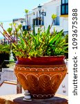 beautiful ceramic flower pot on ...   Shutterstock . vector #1093675388