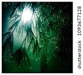 street light shines behind pine ... | Shutterstock . vector #1093677128