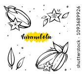 set carambola exotic fruits in...   Shutterstock .eps vector #1093689926