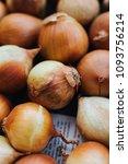 onions is plant head  bulb ....